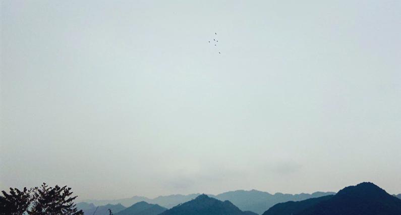 3.10+内江处(唐诗瑶)+向往自由 摄影